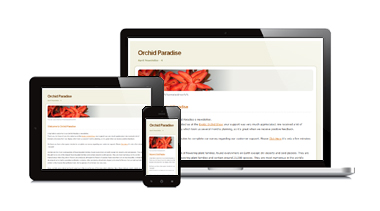 Lifeboat Marketing - Email Marketing - Responsive Multi-system Image